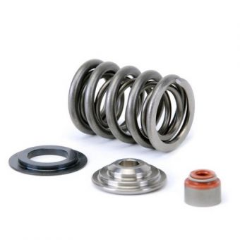 Skunk2 Alpha Dual Valve Springs And Titanium Retainers